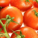 طماطم و الفلفل